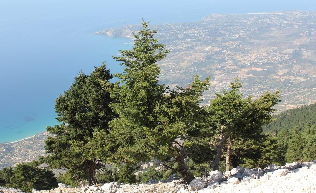 Nationaal Park Enos