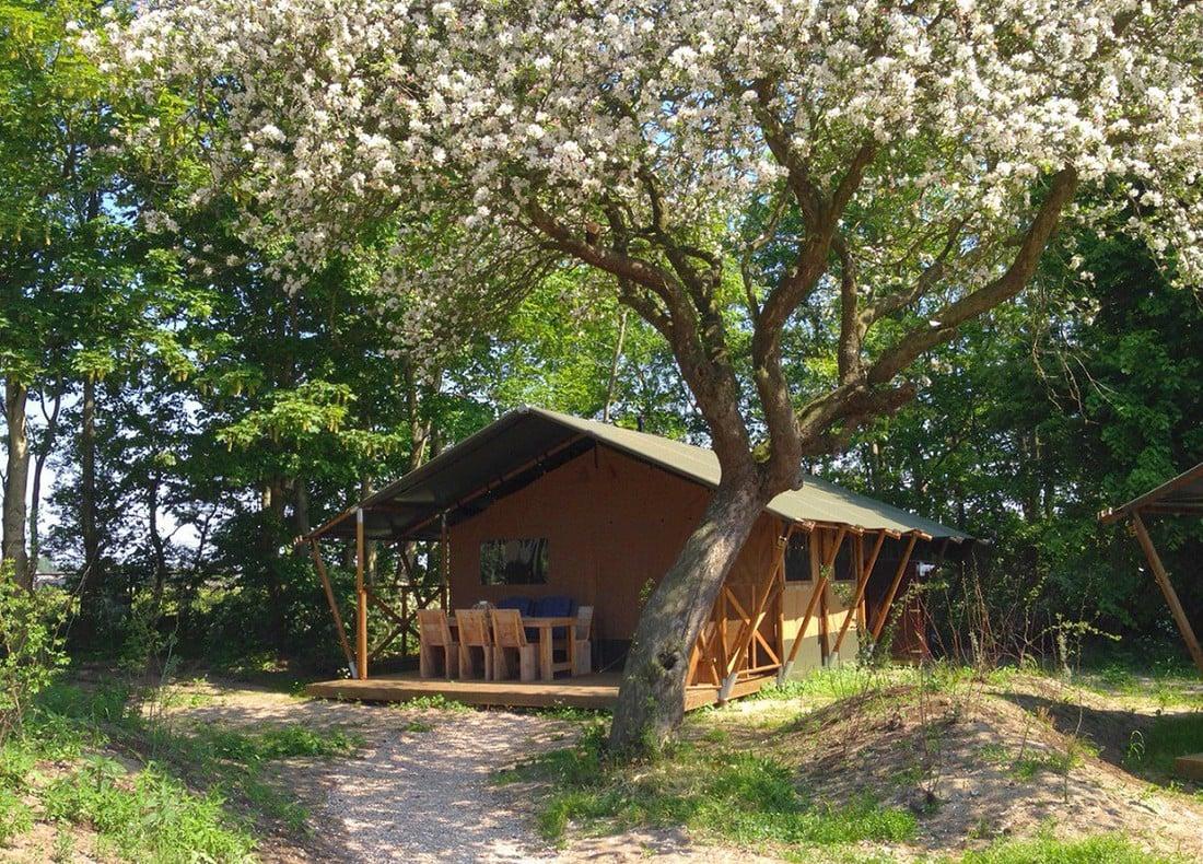 Schoonste vakantieparken - vakantiepark Qurios