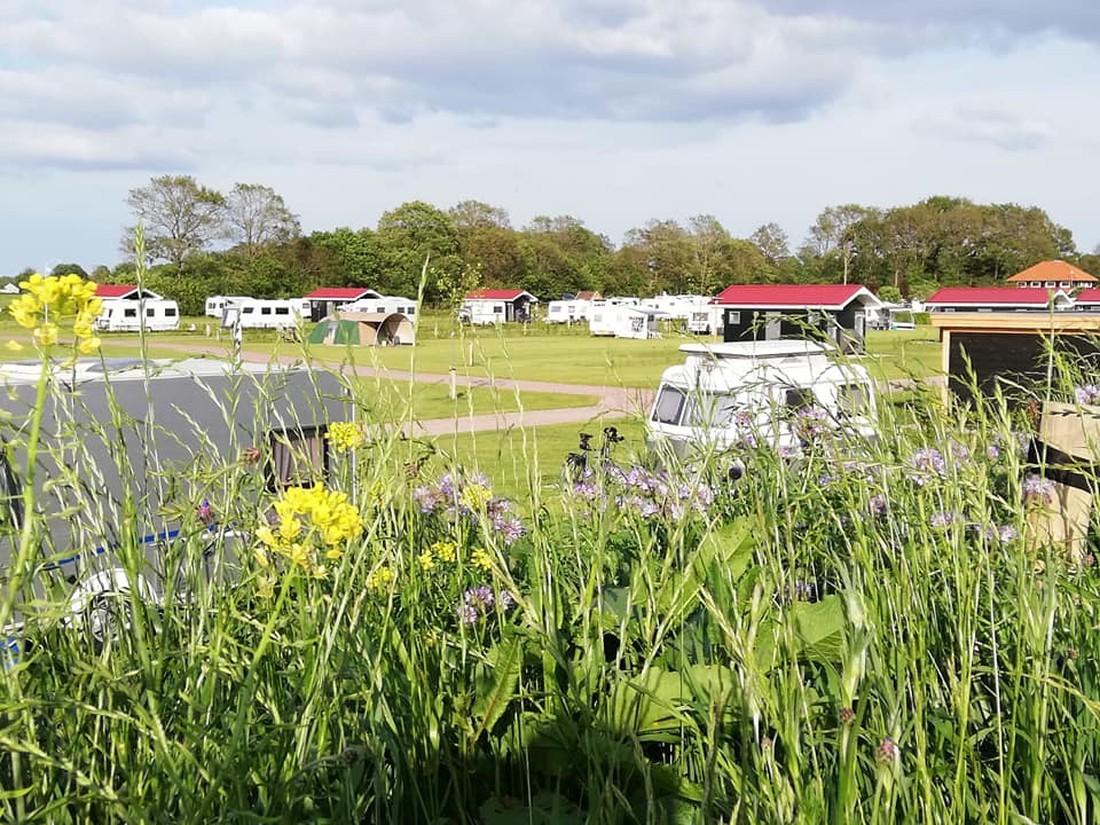 Camping het Noordenveld