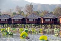 Hupin Khaung Daing