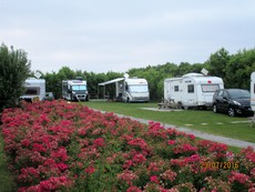 Camping Minicamping de Bloemhoek