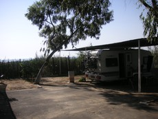 Camping Palm Mar