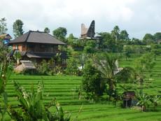 Hotel Sawah Indah Villa