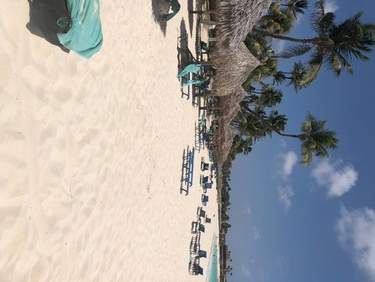 Hotel Divi Aruba