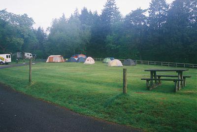 Camping Beddgelert Forest Camp Site