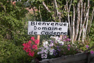 Camping Domaine de Cadenne