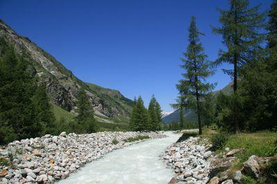 Camping Swissplage