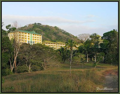 Hotel Gamboa Rainforest Resort