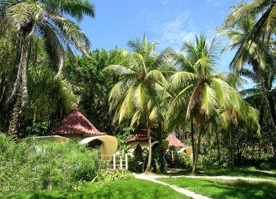 Hotel Ylang Ylang Beach Resort - El Sano Banano Village