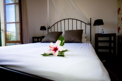 Bed and Breakfast Casa Bougainvillea