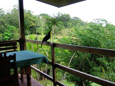 Hotel La Laguna del Lagarto Lodge