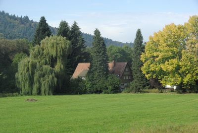 Camping Feriencamp. Münstertal