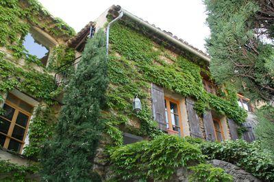Vakantiehuis Huis van de kunst