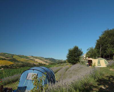 Camping Agriturismo Lavanda Blu (+app+B&B)
