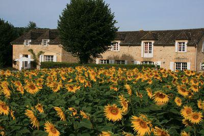 Vakantiehuis Domaine des Hirondelles