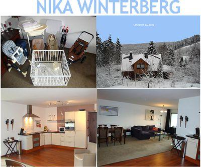Appartement Nika Winterberg