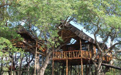 Hotel Pezulu Tree House Game Lodge