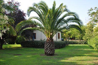 Vakantiehuis Maison U Buscu