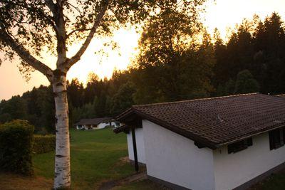 Vakantiepark Beierse Woud