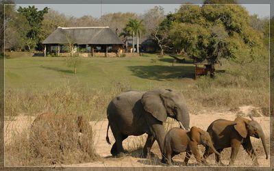 Lodge Inyati Game Reserve