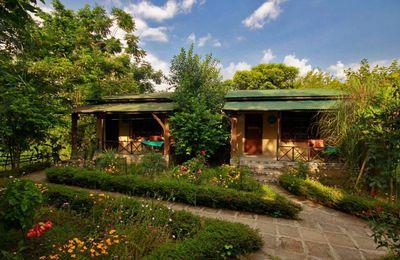 Hotel Chitwan Gaida Lodge