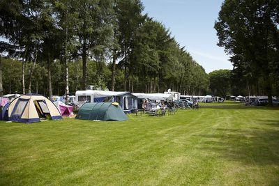 Camping Eurocamping Vessem
