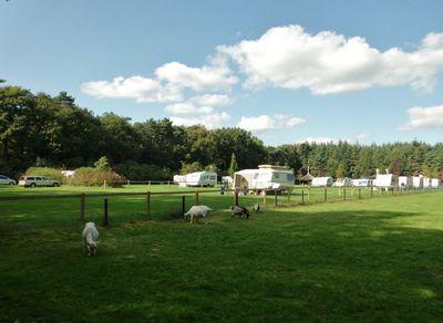 Camping Hoeve Kroep An