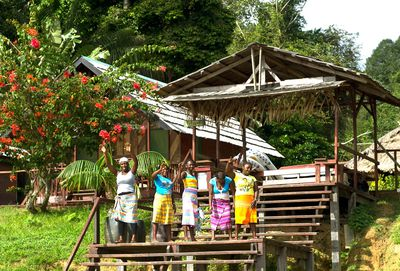 Lodge Danpaati River Lodge