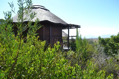 Lodge Garden Route Game Lodge