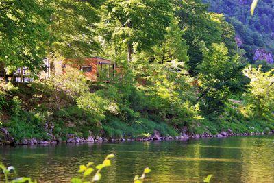 Camping Yelloh! Village Nature et rivière ( Ex : Les Fayards)