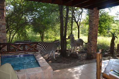 Vakantiehuis The Wild Bunch
