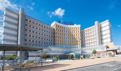 Hotel HL Suitehotel Playa Del Inglés