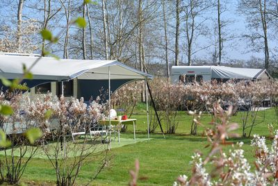 Camping Jelly's Hoeve
