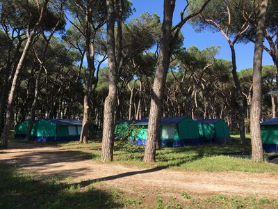 Camping Roma Capitol