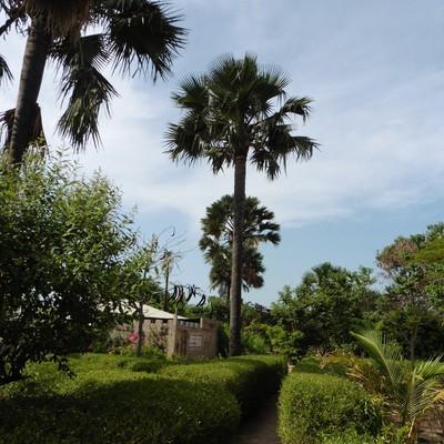 Camping Gambia