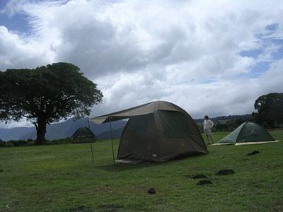 Camping Ngorongoro Simba