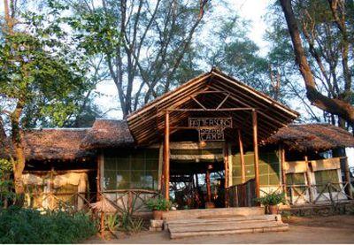 Camping Patterson's Safari Camp