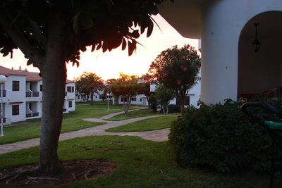 Appartement Son Bou Gardens