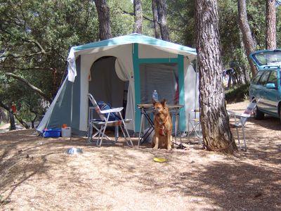Camping Municipal La Pinède