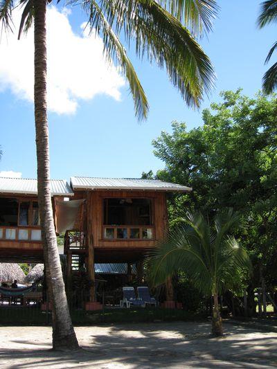 Bungalow Samara Treehouse Inn