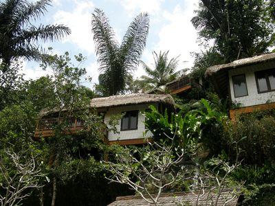 Bungalow Nandini Bali Jungle Resort & Spa