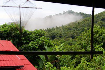 Hotel Morning Mist Resort