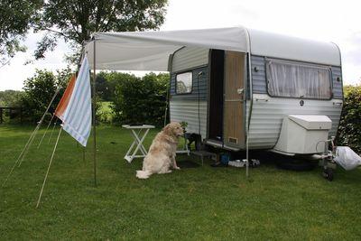 Camping Natuurkampeerterrein Daske