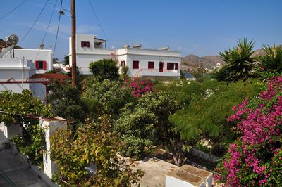 Appartement Studio Anna Amorgos