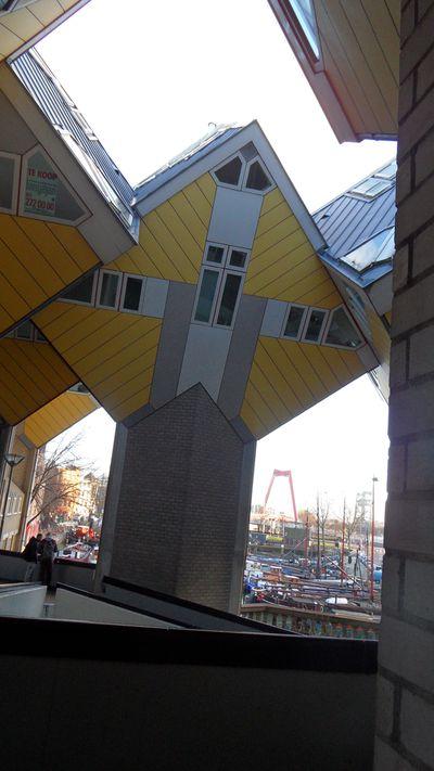 Hostel Stayokay Rotterdam