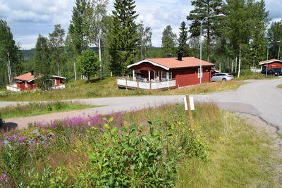 Vakantiepark Säfsen Resort