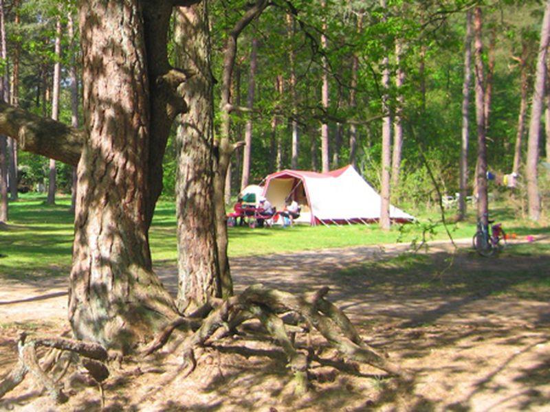 Camping Langeloerduinen