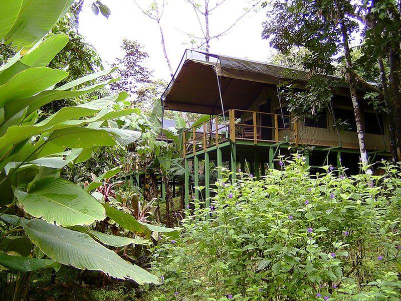 Hotel Rio Tico Safari Lodge