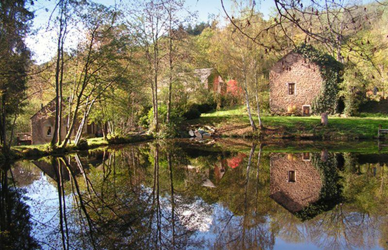 Vakantiehuis Domaine Moulin des Vernes