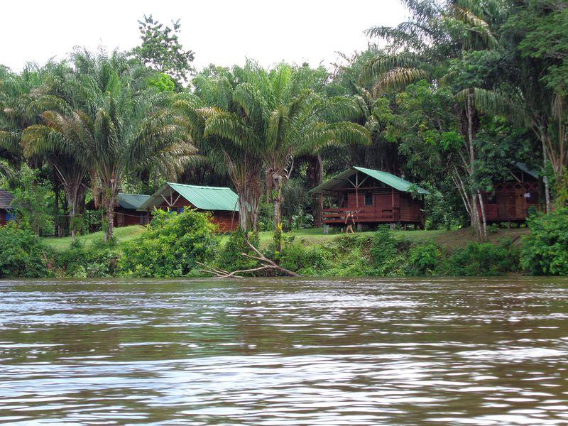 Lodge Jungle Resort Pingpe